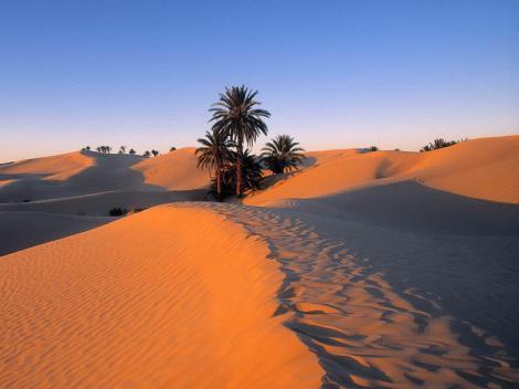 Sahara-Desert-2
