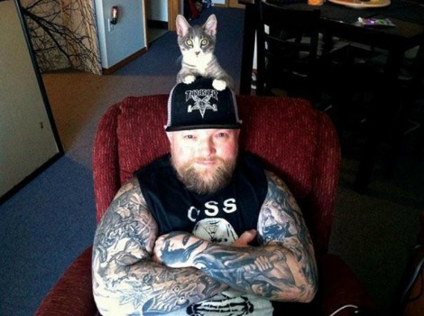 copertina gatti metalshockfinland.com