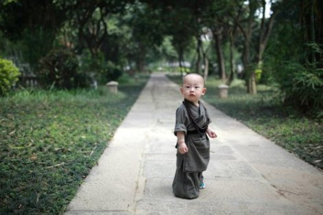a fujian little monk