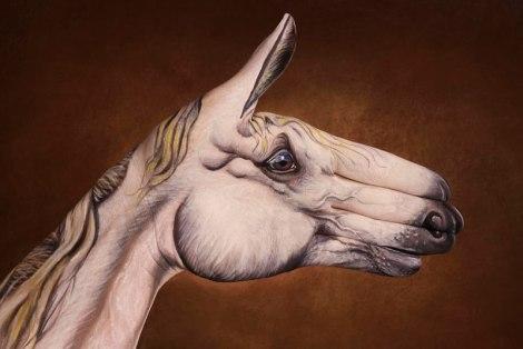 cavallo_bianco