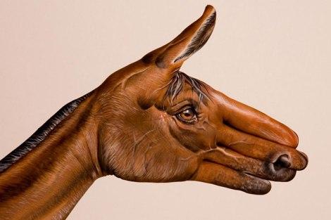 cavallo_sauro