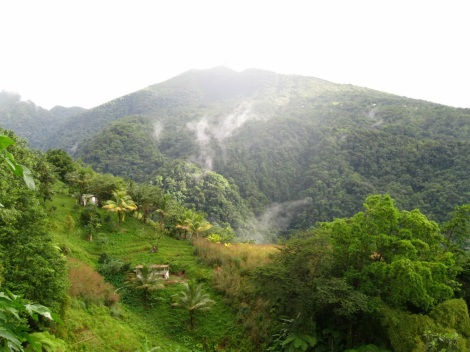 Waitukubuli National Trail goes through Dominica